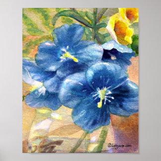 Cierre U de la acuarela de la amapola azul Poster