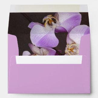 Cierre violeta y blanco de la orquídea encima de l