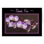 Cierre violeta y blanco de la orquídea encima de felicitación