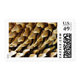Ciérrese encima de imagen de un cono sello