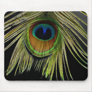 Ciérrese encima de la pluma Mousepad del pavo real