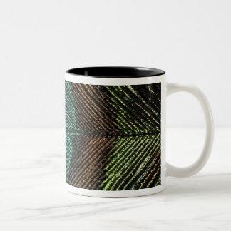 Ciérrese encima de la vista del eyespot en la taza de café de dos colores