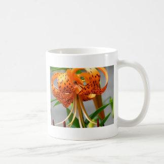 Ciérrese encima de lirio tigrado manchado naranja taza de café