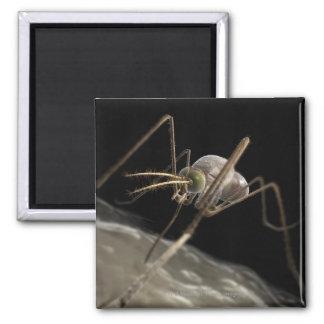 Ciérrese encima de morder del mosquito 3d iman para frigorífico