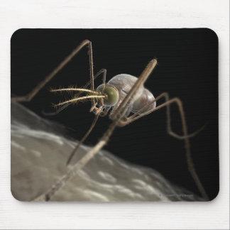 Ciérrese encima de morder del mosquito 3d mousepad