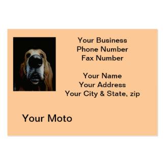 Ciérrese encima de tarjeta de visita del perro