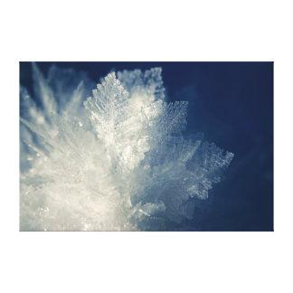 Ciérrese encima de vista de la mañana helada Frost Impresión En Lona Estirada