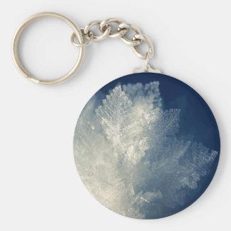Ciérrese encima de vista de la mañana helada Frost Llavero Redondo Tipo Pin