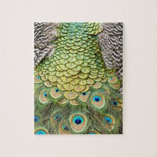 Ciérrese encima del detalle de plumas coloridas en puzzle