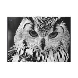 Ciérrese encima del retrato del Eagle-búho eurasiá iPad Mini Fundas