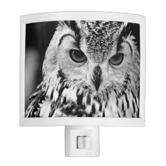 Ciérrese encima del retrato del Eagle-búho eurasiá Luz De Noche