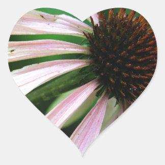 Ciérrese encima del verano Coneflower Pegatina En Forma De Corazón