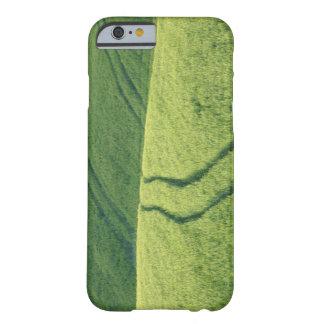 Ciérrese para arriba de campo de trigo con las funda de iPhone 6 barely there