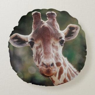 Ciérrese para arriba de jirafa reticulada cojín redondo