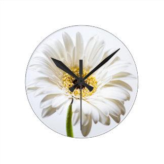 Ciérrese para arriba de la cabeza de flor del reloj redondo mediano