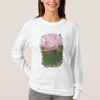 Ciérrese para arriba de la flor de Lotus, del Playera