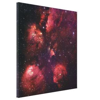 Ciérrese para arriba de la goma 64 de la nebulosa impresión en lienzo