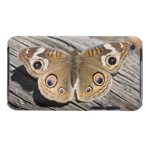 Ciérrese para arriba de la mariposa común del cast barely there iPod protectores