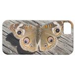 Ciérrese para arriba de la mariposa común del cast iPhone 5 carcasas