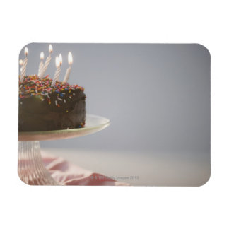 Ciérrese para arriba de la torta de cumpleaños del iman de vinilo