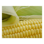 Ciérrese para arriba de maíz poster