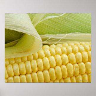 Ciérrese para arriba de maíz póster