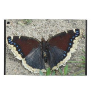 Ciérrese para arriba de mariposa de capa de luto