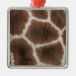 Ciérrese para arriba de piel de las jirafas adorno para reyes