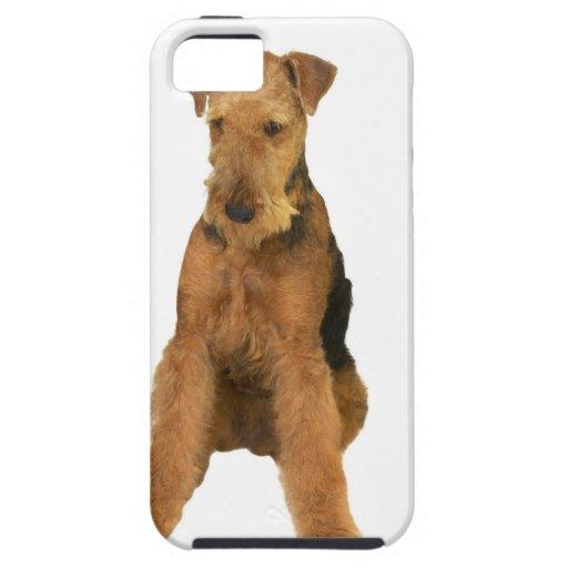 Ciérrese para arriba de un terrier del airedale iPhone 5 Case-Mate coberturas