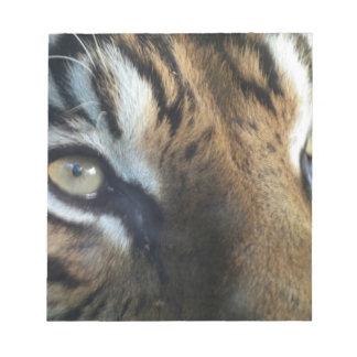 Ciérrese para arriba de un tigre de Sumatran del v Bloc De Papel