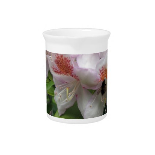 Ciérrese para arriba del rododendro con la abeja jarrones