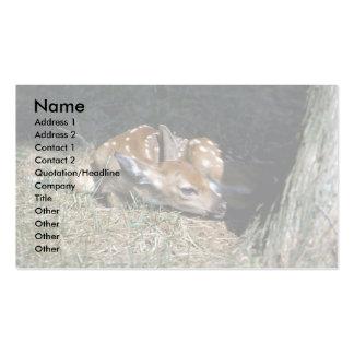 Ciervo-cervatillo Blanco-atado que miente por el Tarjetas De Visita