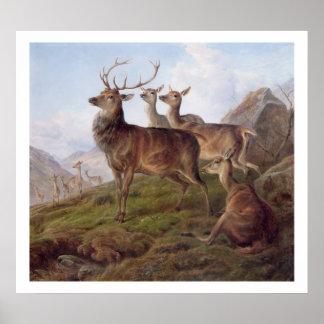 Ciervo común en un paisaje de la montaña, 1872 (el posters