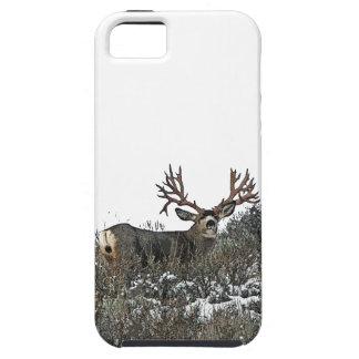 Ciervo mula 2 del monstruo iPhone 5 carcasa