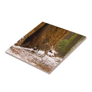Ciervo mula azulejo cuadrado pequeño