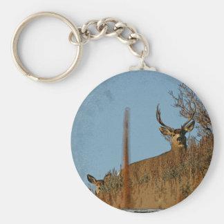 Ciervo mula de madera 3 de la ventana de la pared llavero redondo tipo pin