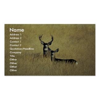 Ciervo mula tarjetas de visita