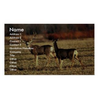Ciervo mula plantillas de tarjeta de negocio