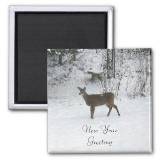 Ciervo-Nuevo saludo del año Imán Cuadrado