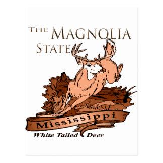 Ciervos atados blanco del estado de la magnolia de tarjetas postales