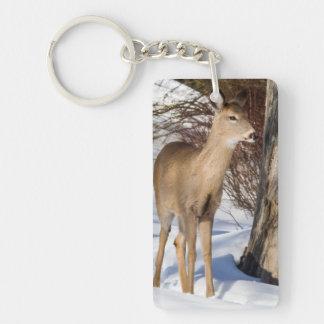 ciervos Blanco-atados (ascendentes cercanos) Llavero Rectangular Acrílico A Doble Cara