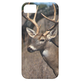 Ciervos Blanco-Atados - cubierta del iPhone 5 iPhone 5 Case-Mate Carcasas
