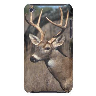Ciervos Blanco-Atados - cubierta del tacto de iPod iPod Case-Mate Fundas