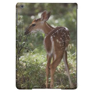 ciervos Blanco-atados, virginianus del Odocoileus, Funda Para iPad Air