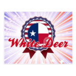 Ciervos blancos, TX Tarjeta Postal