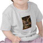 Ciervos Camisetas