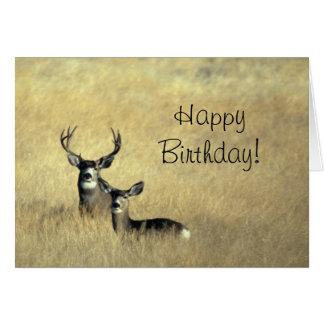 Ciervos con día del feliz cumpleaños de las astas tarjeta de felicitación
