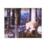ciervos de la cola blanca impresion en lona