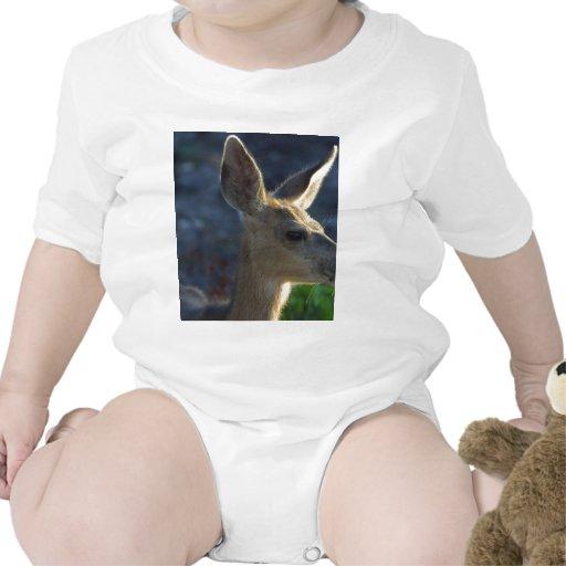 Ciervos de la cola blanca traje de bebé