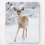 Ciervos de la nieve alfombrilla de ratón